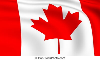 Flying Flag of Canada | LOOPED |