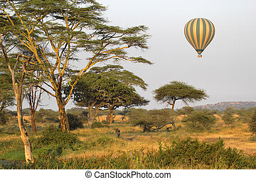Flying green and yellow balloon flying over the savannah -...