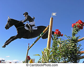 Flying High - A finalist flies over a jump in the Premier...