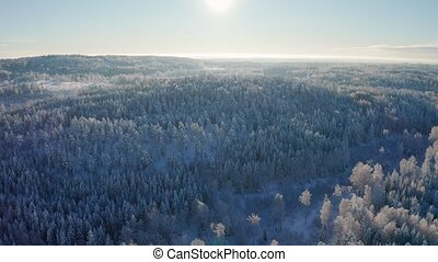 Flying high above epic snow covered forest in cold winter...