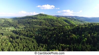 Flying high above the hilly woodland. Aerial view - Flying...