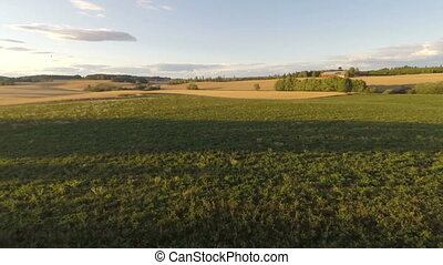Flying in the air over grass fields - Camera flying over a...