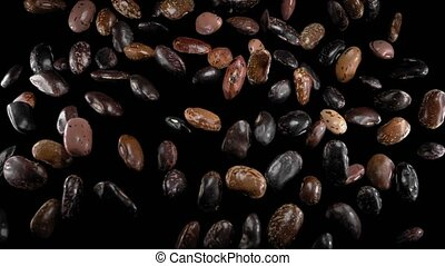 Flying legumes on a black background. Colored beans. Super slow motion.