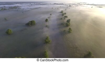 Flying low over the calm river. Dense fog over the water....