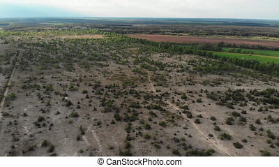 Flying over a Sandy Field with Green Vegetation and Trees. Panoramic aerial view of trees, forest, shrubs and farmland. Landscape Drone view in 4K.