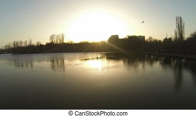 Flying Over A Lake In Bucharest