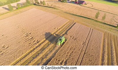Flying over combine harvester at grain field on a farm