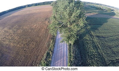 Flying over country road drone crash on trees - Flying over...