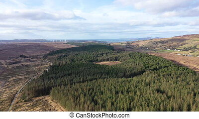 Flying over forest close to the town Glenties in County Donegal - Ireland.