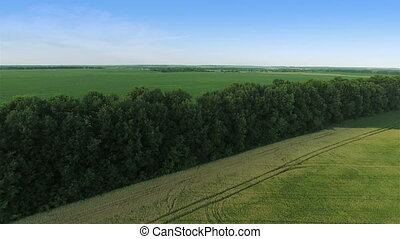 Flying Over Green Field - Aerial shot: Flying Over Big Green...
