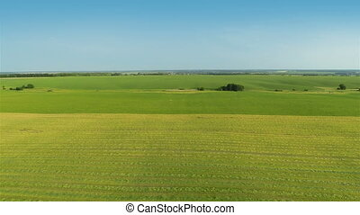 Flying Over Green Fields - Aerial shot: Flying Over Green...