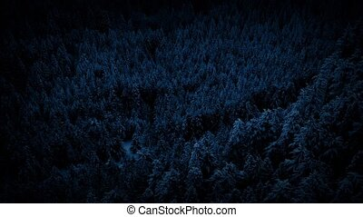 Flying Over Snowy Forest At Night