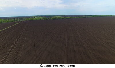 Flying over the sown field