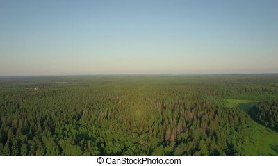 Flying over vast green woods in Russia - Aerial panorama of...