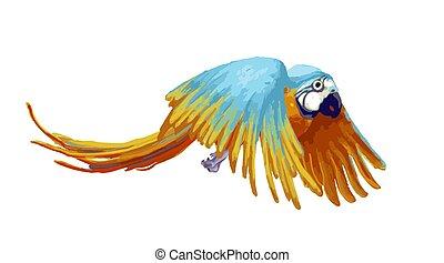 Flying parrot, cartoon animal on white