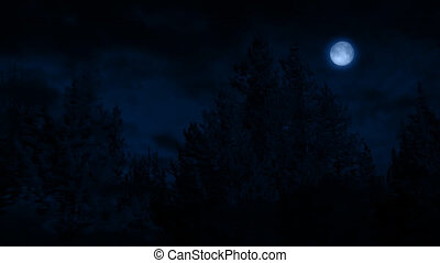 Flying Past Forest At Night With Moon