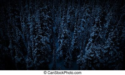 Flying Past Frozen Wilderness Trees - Aerial view moving...