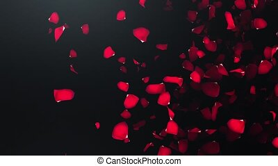 Flying petals of roses with on an black background