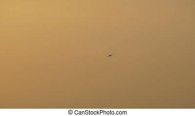 Flying Plane at Sunset