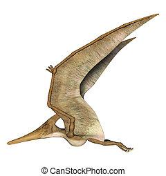 Flying Pteranodon - 3D digital render of a prehistoric...