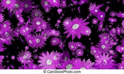 Flying purple flowers on black