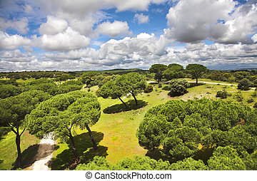 Flying spring the clouds - Huge suburban park of Madrid and...