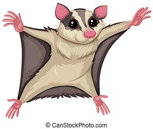 Flying Squirrel With Happy Face Illustration
