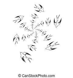 Flying Swallow Animal Pattern.
