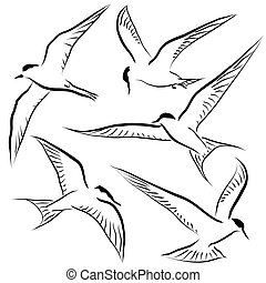 Flying tern sketches - Set of editable vector sketches of...
