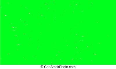 Flying Through Stars on Green Screen