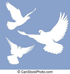 flying white doves