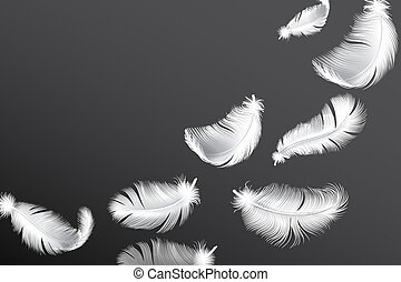 Flying white feathers. Falling realistic bird or angel wings feather flow vector background