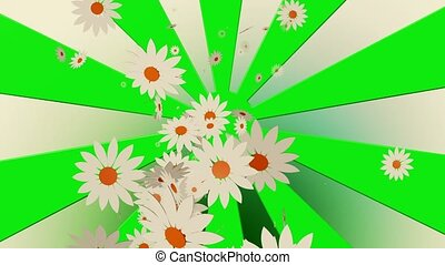 Flying white flowers on sunburst