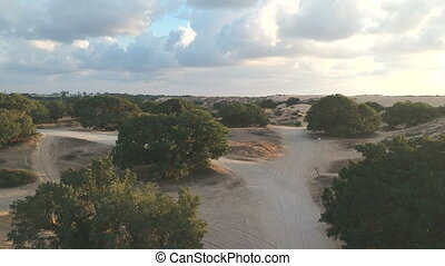 Flyover Ashdod Natural Dunes shot clip
