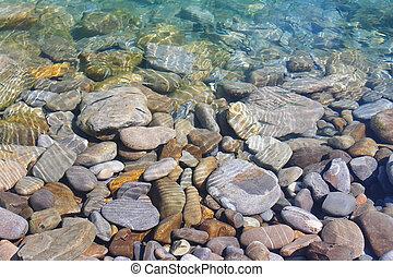 flytande, liten, fish, på, a, bakgrund, av, hav, kiselstenar, vatten under, på, strand