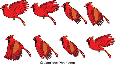 flyve, animation, kardinal, fugl
