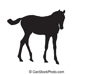 foal silhouette vector - this is a black silhouette from a...