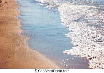 Foamy water on the shore.