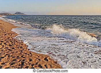 foamy wave of the sea on sandy beach