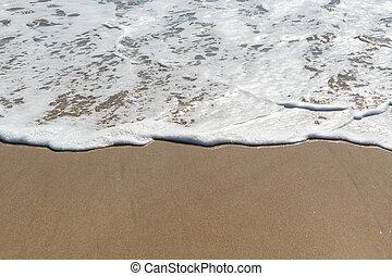 Foamy Wave on Beach