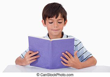 focalizado, leitura menino, um, livro