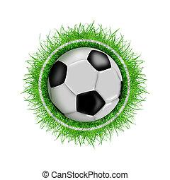 focilabda, alatt, zöld fű