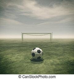 focilabda, képben látható, egy, zöld fű