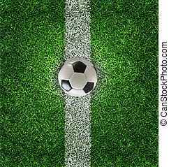 focilabda, képben látható, fű