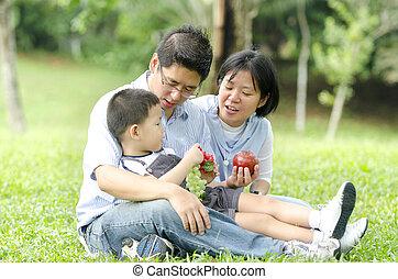 foco, ao ar livre, piquenique, família, asiático, bebê, durante, tendo