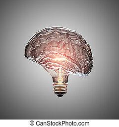 foco, cerebro