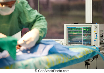 focus on a life monitor for a cat under anesthesia -...