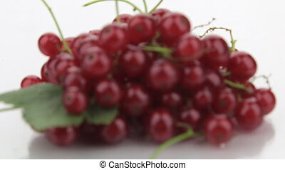 Focus on a pile of red currant.