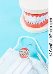 Focus white healthy teeth in mirror of dental equipment with model teeth.