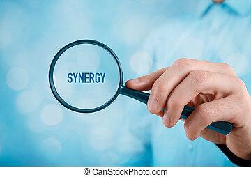 Focused on synergy